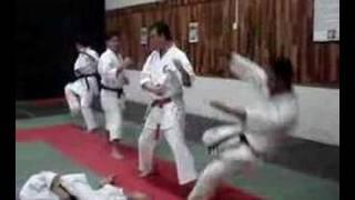 Bunkai Naihanchi Shodan Shorin-Ryu Shin Shu Kan