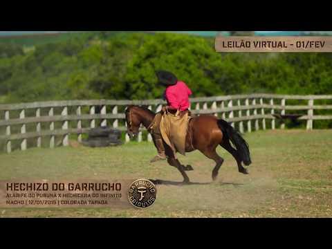 Lote 31 - Hechizo do Garrucho