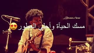 احمد امين بدر البدور