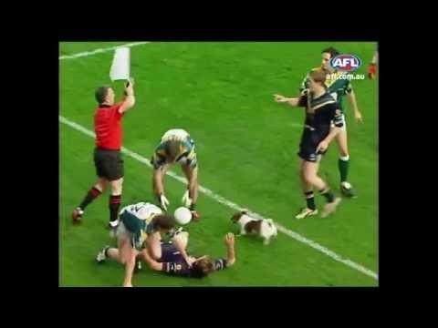 Dog Invades International Rules Match - AFL