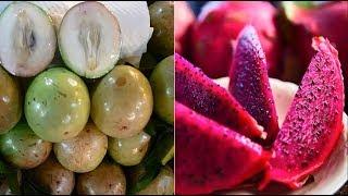 6 Loại Quả Việt Nam Không Bao Giờ Nhập Từ Trung Quốc Ăn Trái Cây Mà Không Biết Thì Phí Cả Đời - SKTN