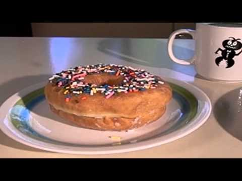 Bug-A-Salt - Donut