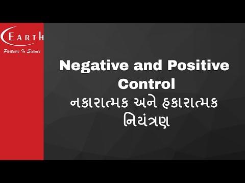 Negative and Positive Control | નકારાત્મક અને હકારાત્મક નિયંત્રણ | Molecular Basis of Inheritance