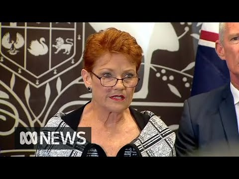 Pauline Hanson says media was blinded by hate for One Nation in reporting NRA sting | ABC News