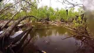 Gölde Balık Avı. Müthiş bir tatlı su avı - http://balikavciligi.org/