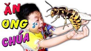 Tony   Chơi Ngu Ăn Thịt Côn Trùng - ONG, DẾ, VE SẦU - Eat Insects