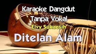 Download Karaoke Elvy Sukaesih   Ditelan Alam