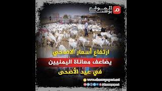 شاهد.. ارتفاع أسعار الاضاحي يضاعف معاناة اليمنيين في عيد الأضحى
