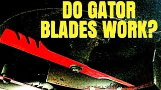 Download Mp3 Husband And Wife Lawn Care  Are Gator Blades Good