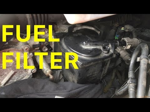 How to Change the Diesel Fuel Filter on your Citroën C4 1.6 HDi