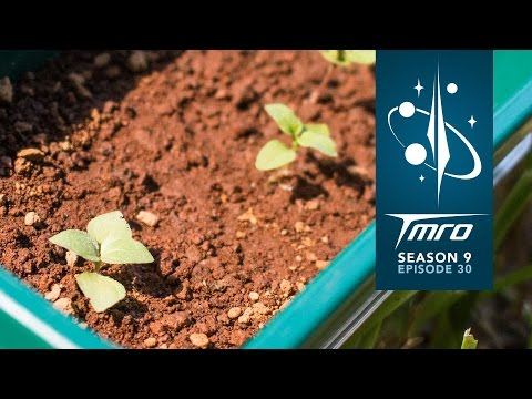Create your own Martian Garden - 9.30