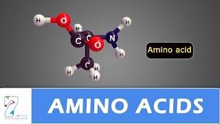 AMINO ACIDS_PART 01