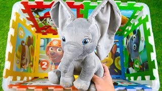Characters, vehicles & colors: Dumbo, Ben & Holly, Paw Patrols. Learn videos for children