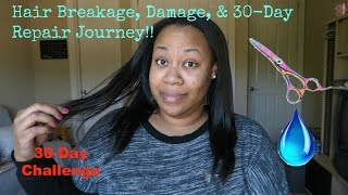 Relaxed Hair Breakage, Damage, & 30-Day Repair Journey!