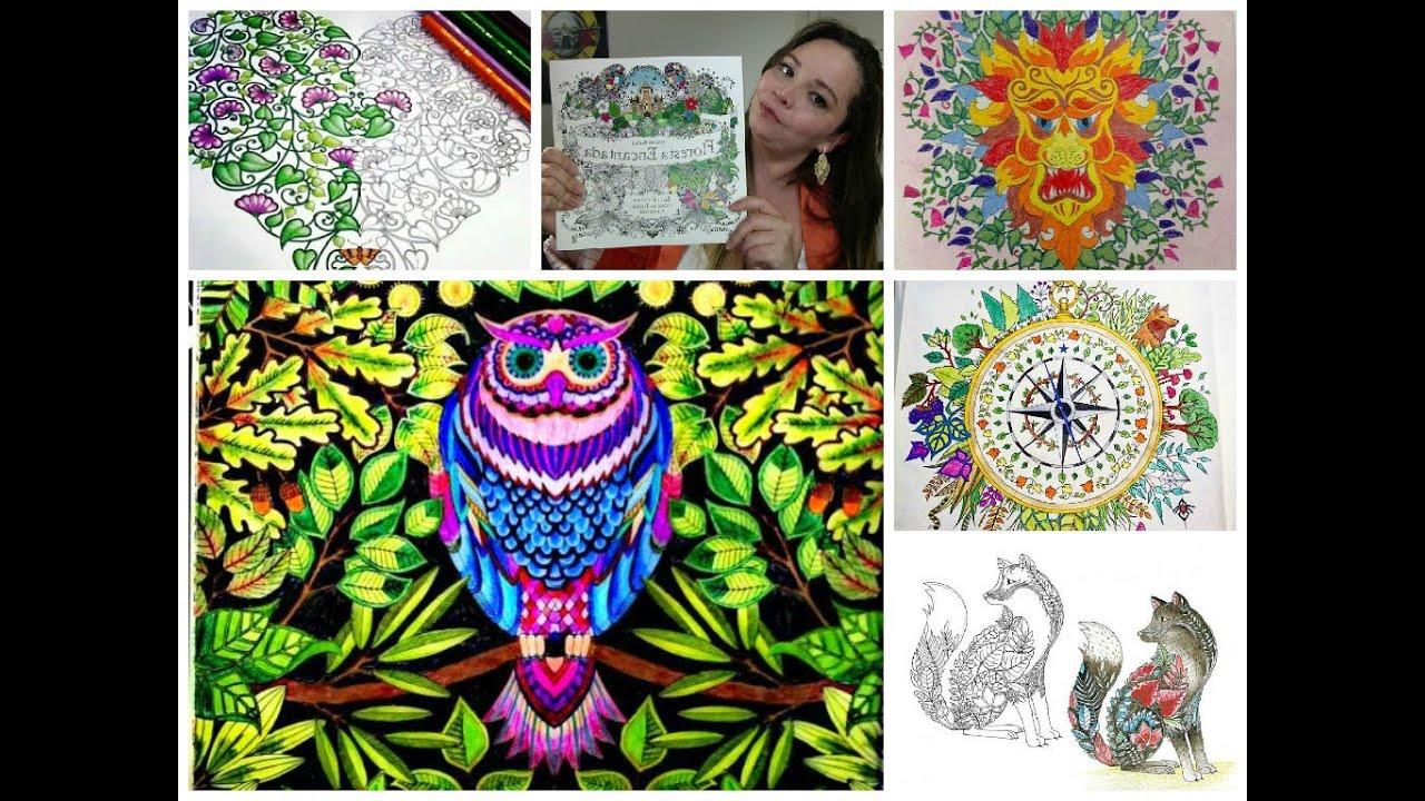 imagens de livro colorido