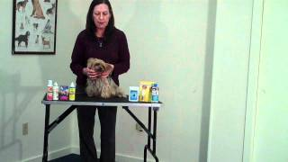 Eye Care Products for Your Pets