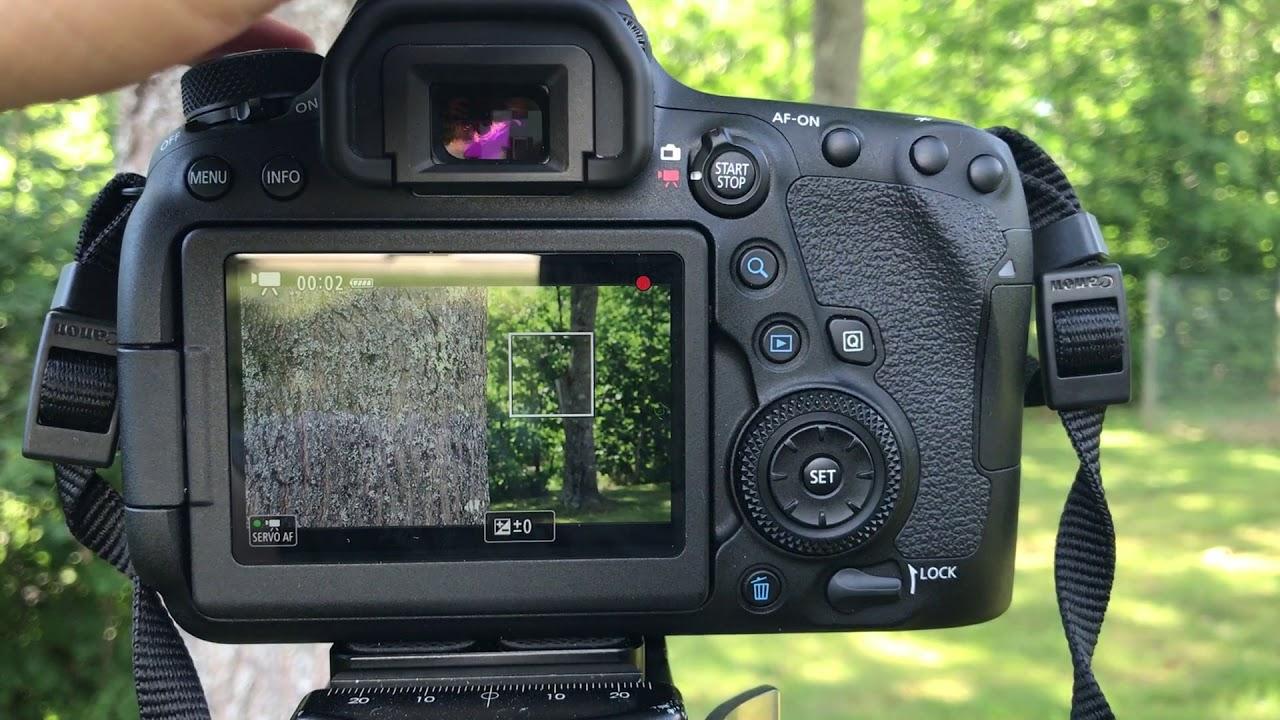 Canon 6D II Autofocus Demonstration