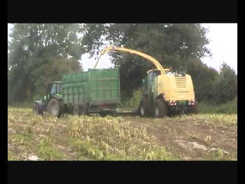 George Ross & Sons - Maize 2010