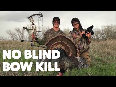 NO BLIND Turkey Bowkill! Head Shot With A Rage! Bowmar Bowhunting