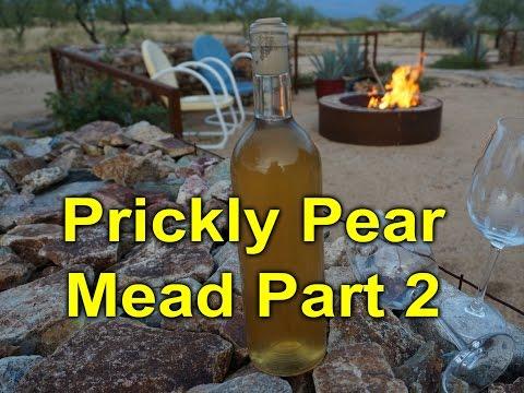 Prickly Pear Mead Part 2: Bottling, Sweetening, Tasting