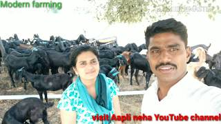 New YouTuber Aapli Neha visit my farm.