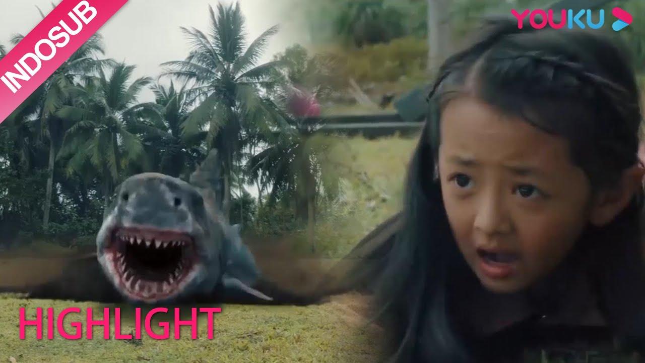 Download Highlight [Land Shark] Hiu naik ke darat dan mulai menyerang manusia   YOUKU [INDO SUB]