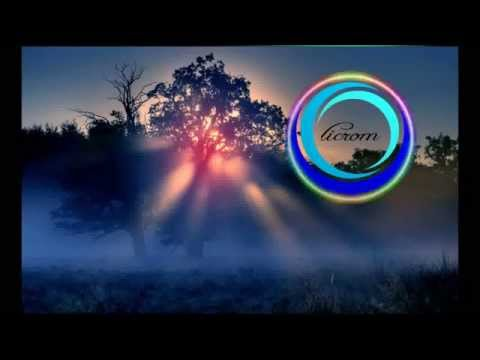 The Chainsmokers - Selfie (Botnek Remix) Vs. Will Sparks - Here We Go [licrom Mashup]