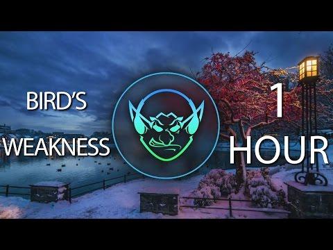 Bird's Weakness (Goblin Mashup) 【1 HOUR】