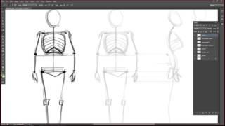Урок 5: базовая анатомия человека