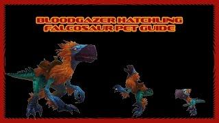 World of Warcraft - How to catch Falcosaur pet Bloodgazer hatchling