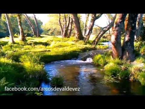 Primavera no Seixal de Gondoriz - Arcos de Valdevez