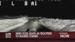 German Shepherd Leads Trooper To Explosion Site, Injured Owner