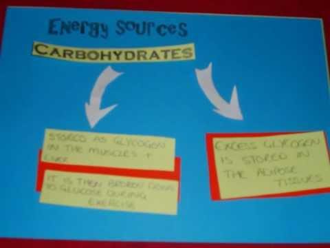 Aerobic Energy System - A Level P.E.