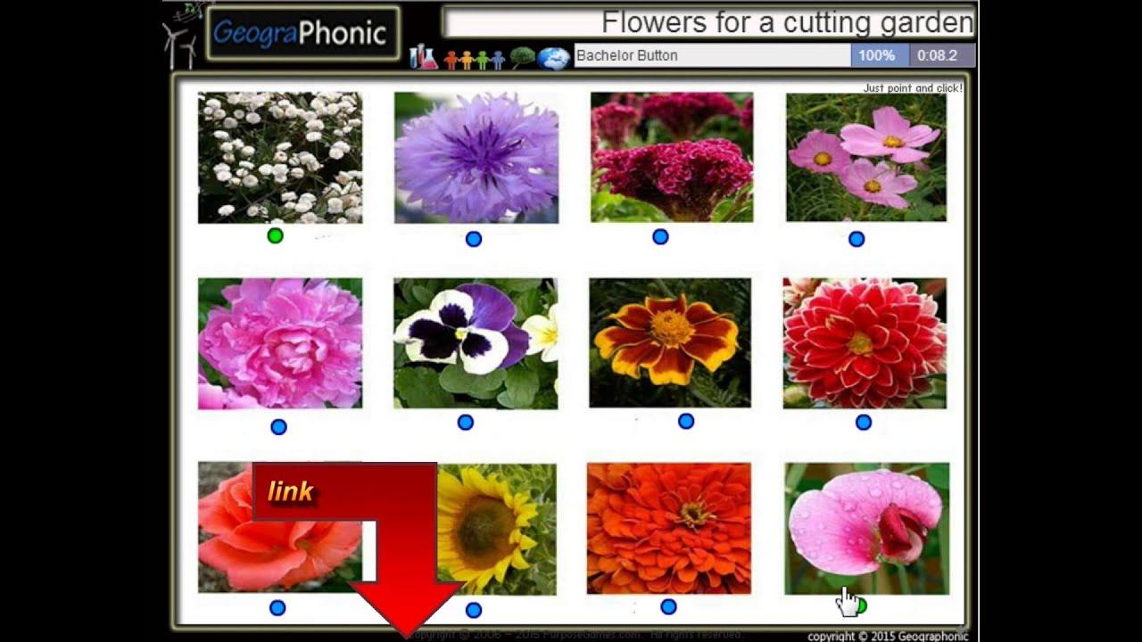 12 fleurs pour un jardin de coupe au printemps youtube. Black Bedroom Furniture Sets. Home Design Ideas