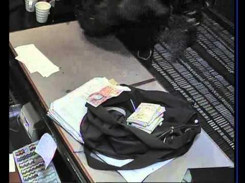 Casino Robbery CCTV