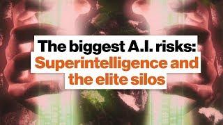 The biggest A.I. risks: Superintelligence and the elite silos | Ben Goertzel