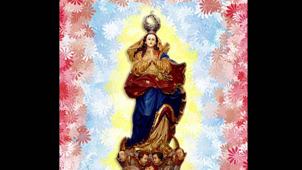 Icatolica Com Nossa Senhora Da Conceição Aparecida: Matinas De Nossa Senhora Da Conceição