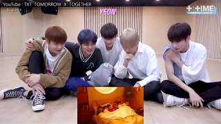 TXT CatDog MV reaction