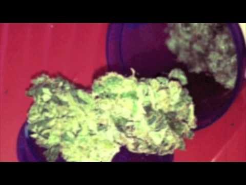 Greenz Direct Delivery