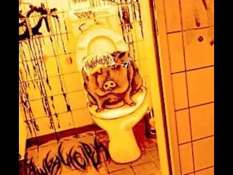 Bbw toilet