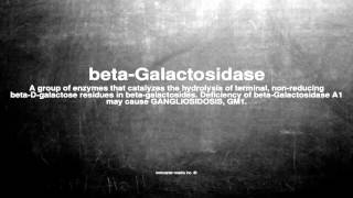 Medical vocabulary: What does beta-Galactosidase mean