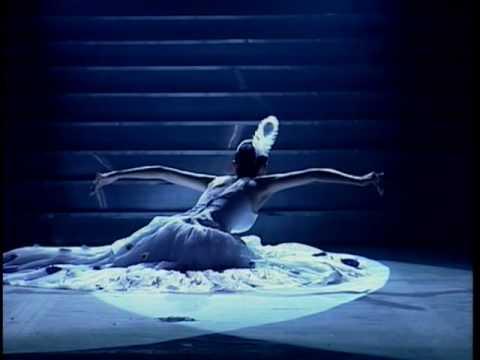Chinese peacock dance by Yang Li-ping  楊麗萍:孔雀舞