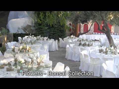 Στολισμος Γαμου κτημα DELAGO www.flowers-bonsai.gr