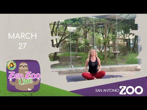 zen-zoo---march-27