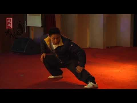 Chen Ziqiang teaching warm ups, standing post, silk reeling