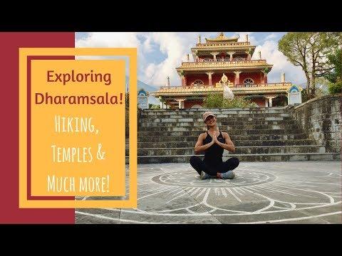 EXPLORING THE CITY OF THE DALAI LAMA!   DHARAMSALA, HIKING & BUDDHIST TEMPLES!