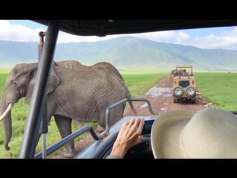 &Beyond Ngorongoro Crater Lodge - Tanzania