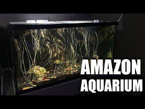 how-i-made-this-aquarium