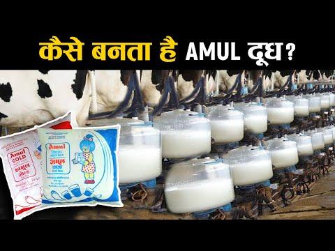 फैक्ट्री में कैसे बनता है अमूल दूध? | The Story of Banas Dairy - Asia's Largest Milk Co-operative