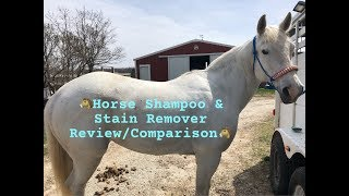 Horse Shampoo & Stain Remover REVIEW/COMPARISON